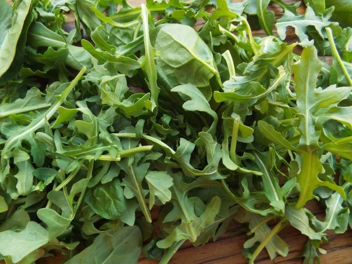 Arugula Spinach Mix for Salad